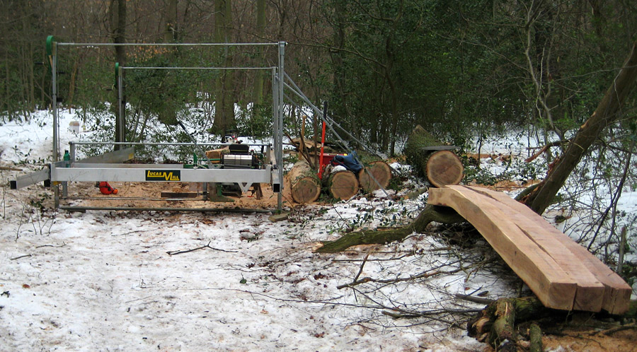 Milling the oak in the wood